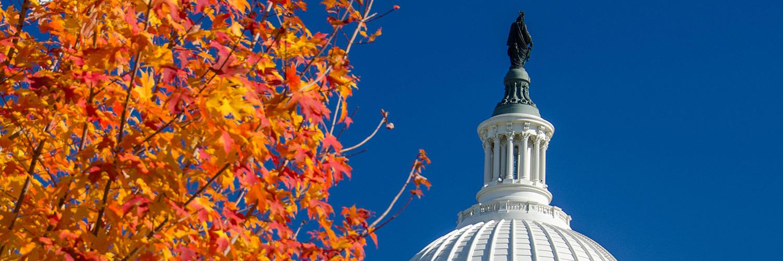 U.S. Capitol with fall foliage