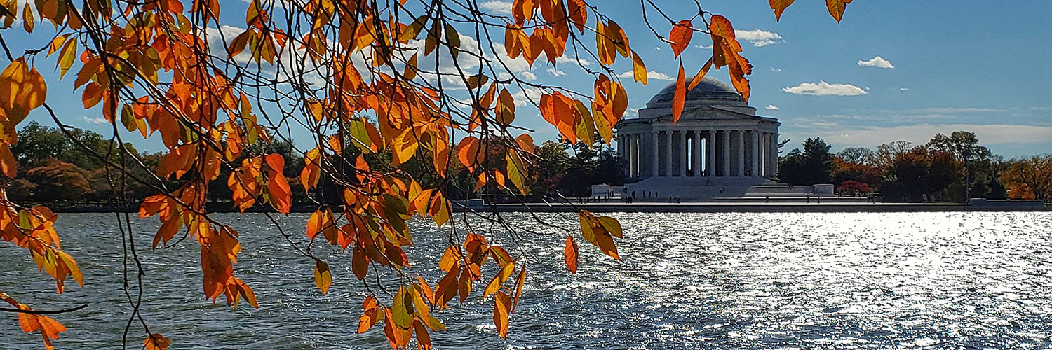 Jefferson Memorial and fall leaves