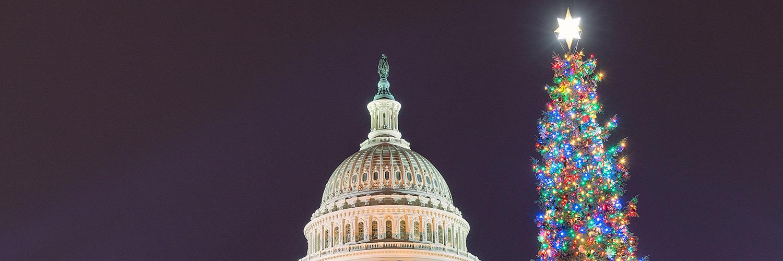 U.S. Capitol and Christmas tree